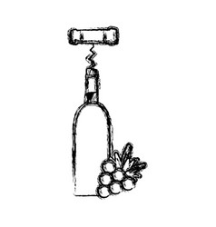 contour wine bottle with grape fruit and corkscrew vector image
