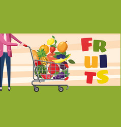 fruits shopping horizontal banner cartoon style vector image