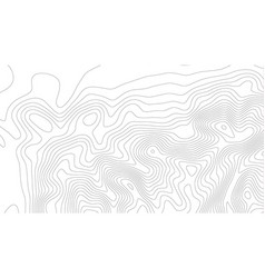 height abstract topo map elevation lines contour vector image