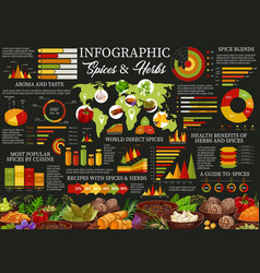 Herbs and spices cooking ingredients infographic vector
