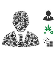 Manager collage of cannabis vector