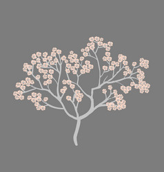 spring card with cherry blossom spring flower tree vector image