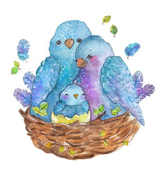 watercolor birds family mother father and chick vector image