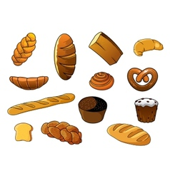 Cartoon different kinds of bread and pastries vector image vector image