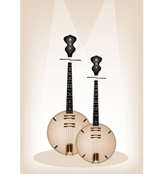 Musical Dan Nguyet vector image vector image