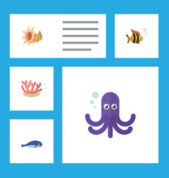 Flat icon marine set of seashell algae tentacle vector