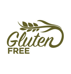 gluten free in organic heallthy food products logo vector image