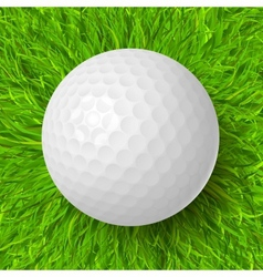 Golf ball on grass vector