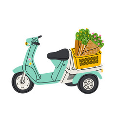 lovely little motorcycle with flowers in a basket vector image