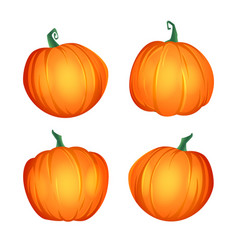 Orange pumpkin set autumn vector