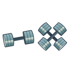 retro barbells vector image