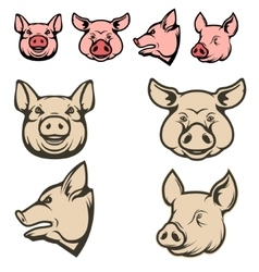 Set of pig heads vector