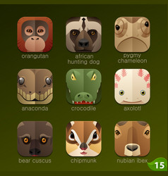 animal faces for app icons-set 15 vector image