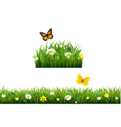 fowers border vector image vector image