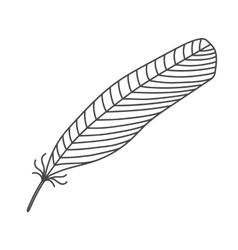 Black hand drawn feather vector image