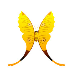 Colorful yellow butterfly with abstract decorative vector