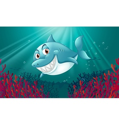 A blue shark under the sea vector image