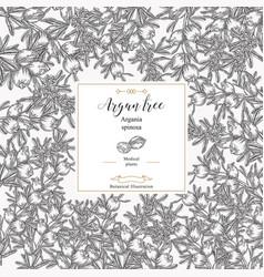 Argan tree argania spinosa square background vector