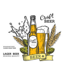 Beer emblem color vector