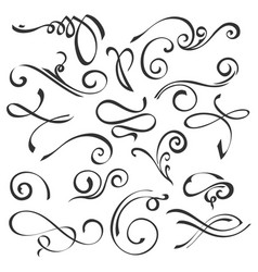 Calligraphic swirls element set vector