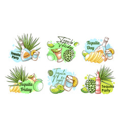 collection engraving tequila party banner vector image