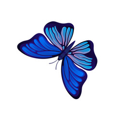 flat icon of bright butterfly flying vector image