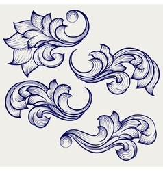Floral baroque engraving elements vector