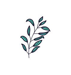 Foliage leaves branch nature ecology icon vector