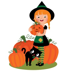 Halloween witch with pumpkins vector image