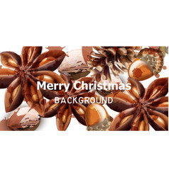merry christmas card with anise star vector image