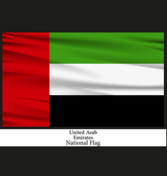 national flag of united arab emirates vector image