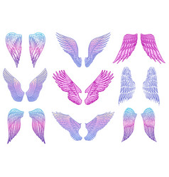 Set angel wings in vintage style template for vector
