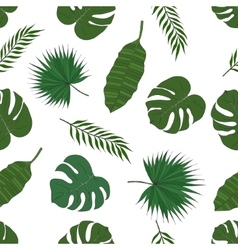 The leaves of the tropical palm trees Pattern vector