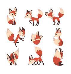 adorable little fox collection cute fluffy wild vector image