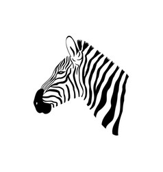 Black and white zebra portrait with side view vector