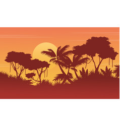 collection background jungle with tree silhouette vector image
