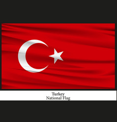 national flag of turkey vector image vector image
