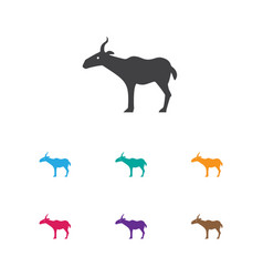 Of zoo symbol on antelope icon vector