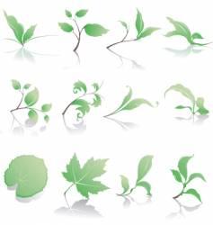 plant design elements vector image vector image