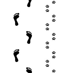 Prints of feet and paws vector image vector image