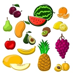 Juicy fresh fruits set in cartoon style vector image