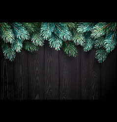 christmas background with fir branches on a black vector image