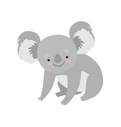 cute koala bear lovely grey animal character vector image