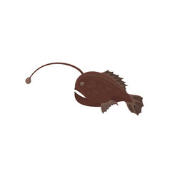 small predatory fish with brown fins marine vector image