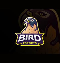 bird mascot character logo design vector image