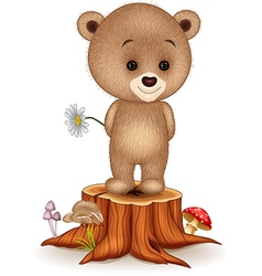 Cute little bear on tree stump vector