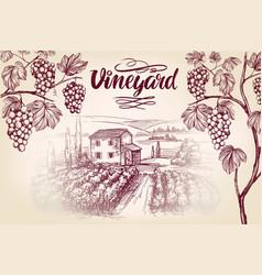 Grape vine vineyard grape calligraphy text vector