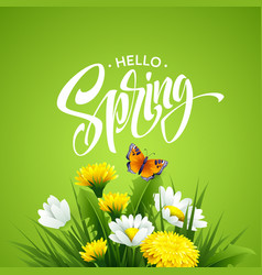 Inscription hello spring on background with spring vector