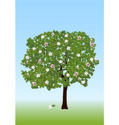 magnolia vector image