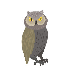 Owl isolated on white background vector